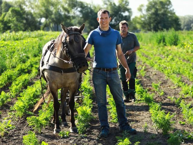 Mann mit seinem Pferd steht auf einem Feld, © Beate Wätzel
