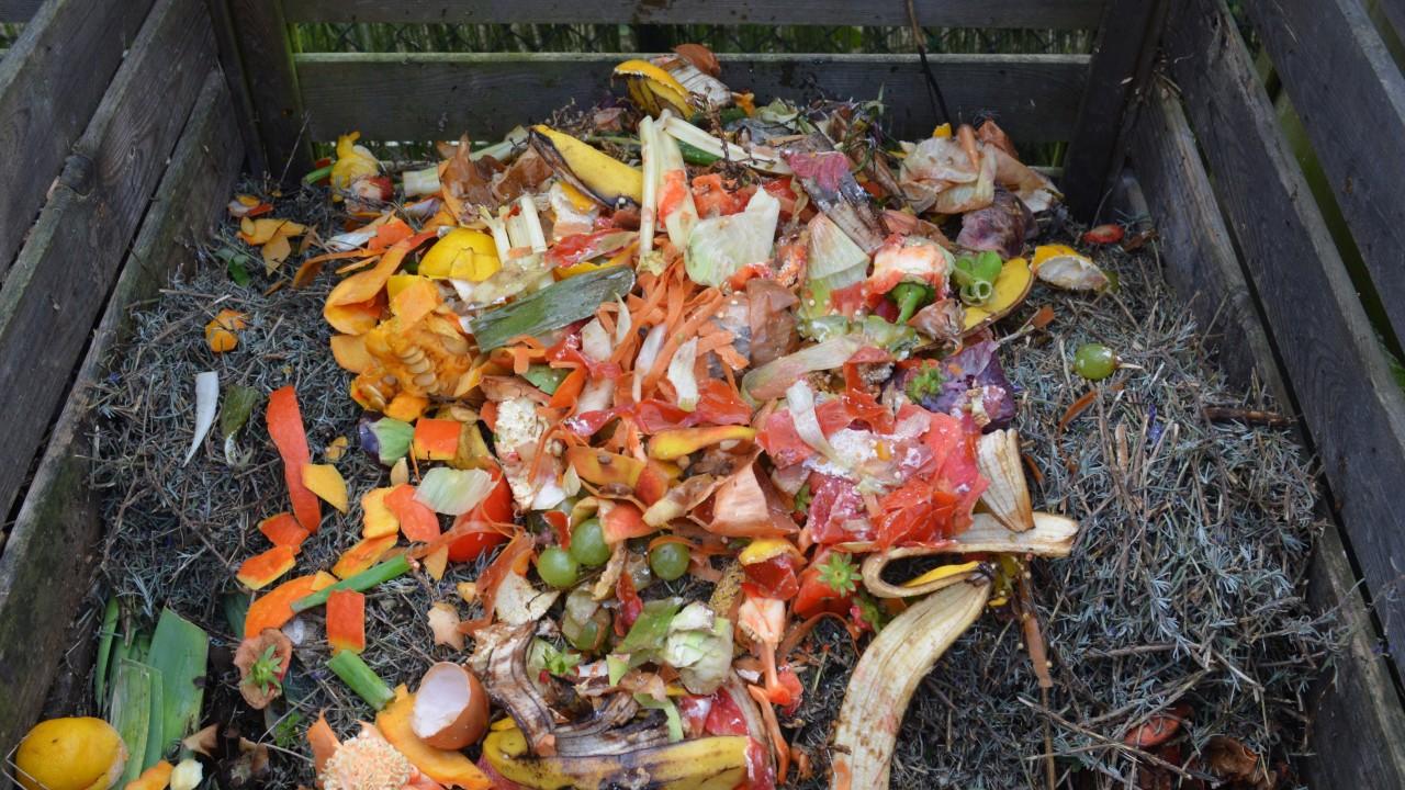 Organische Abfälle aus dem Haushalt können selbst auf dem eigenen Kompost entsorgt werden